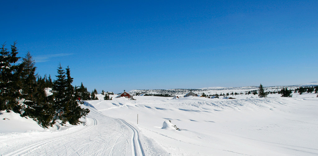 vinter_hoeyfjellet_10916944